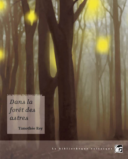 Dans la forêt des astres